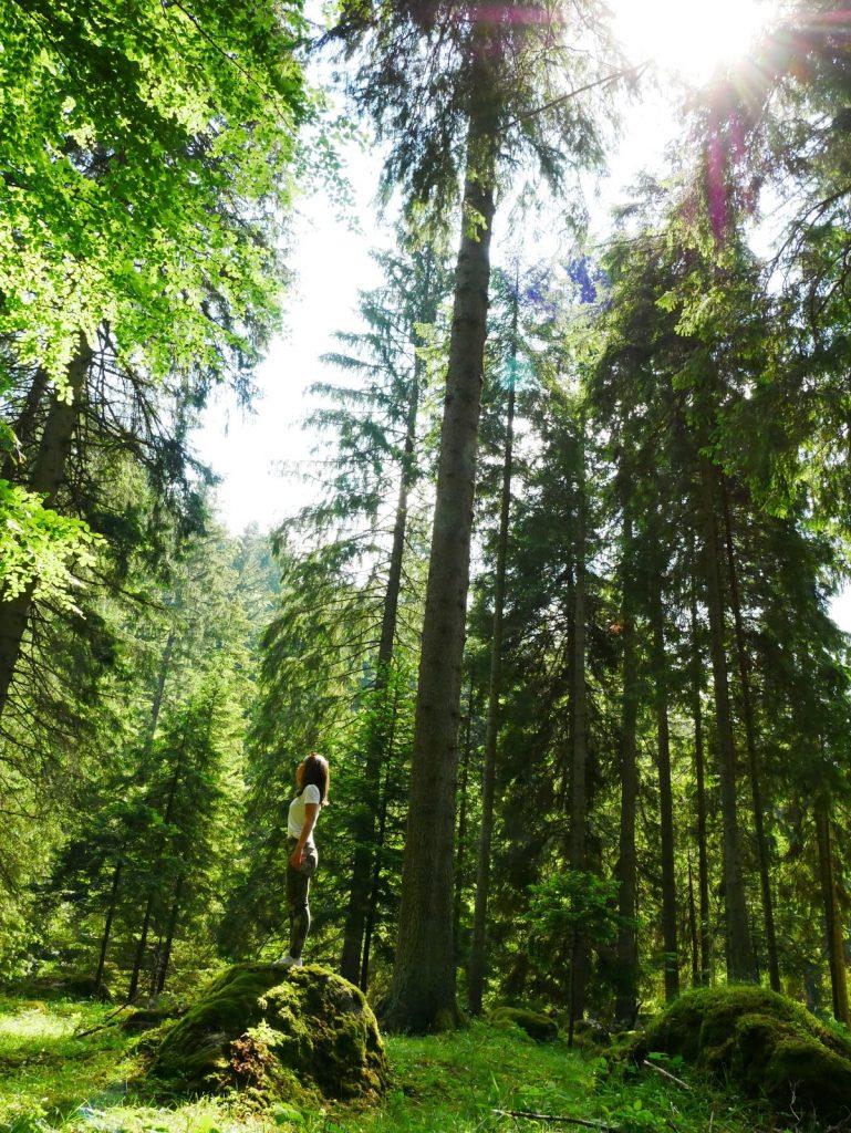 chica posando en medio de árboles