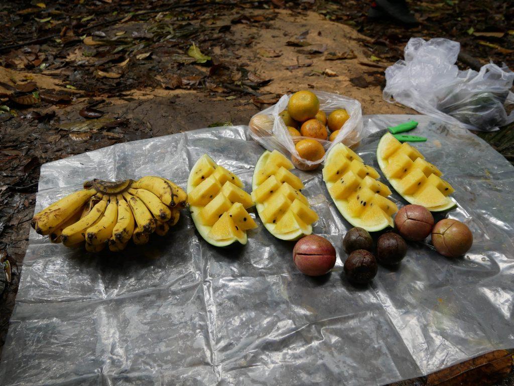 almuerzo copuesto por fruta en el treking de Bukit Lawang