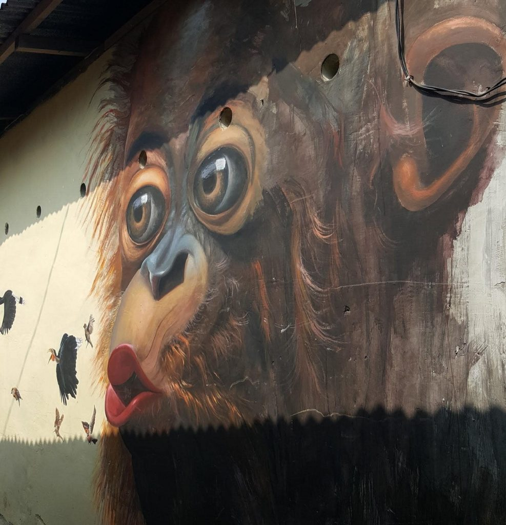 grafiti orangután