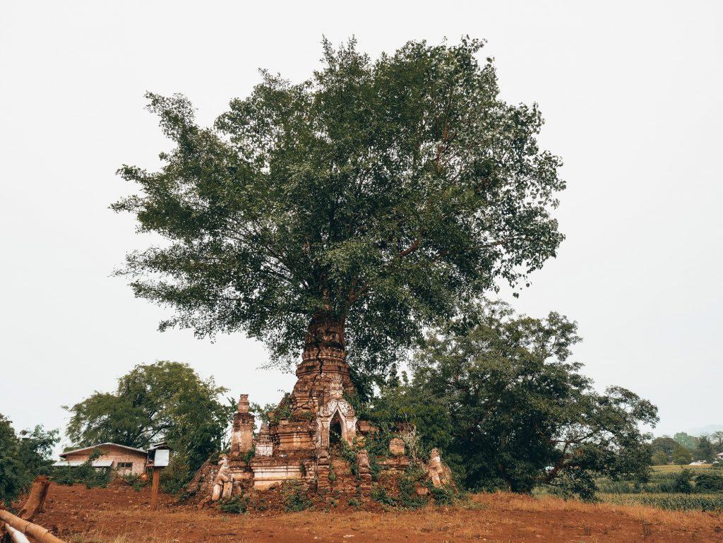 little Bagan en Hsipaw
