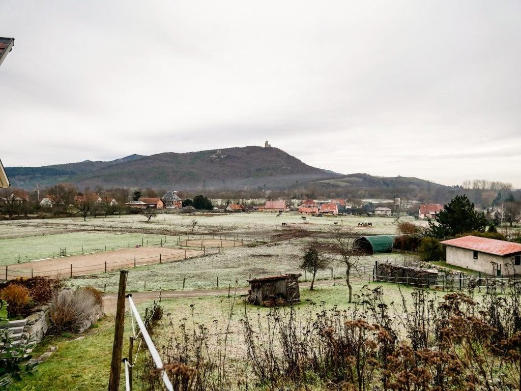 paisaje de naturaleza en Alsacia