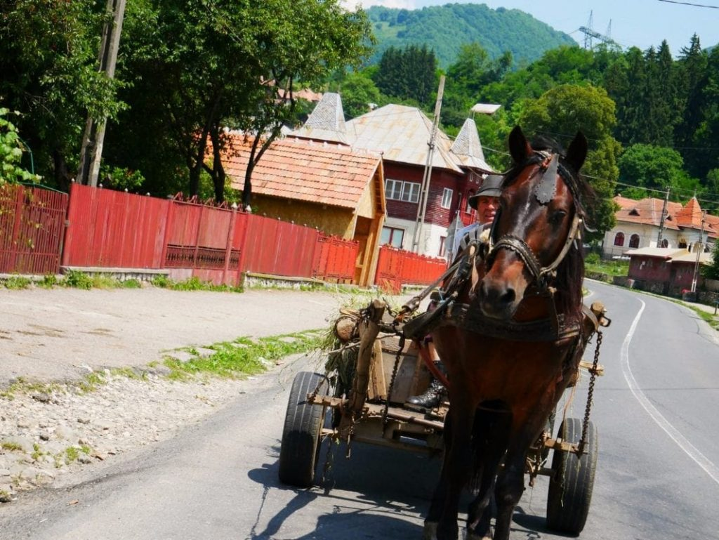 carro tirado por un caballo en plena carretera de Rumanía